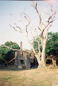 Corregidor 3
