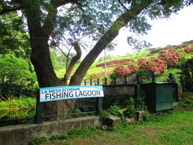 fishing lagoon 1