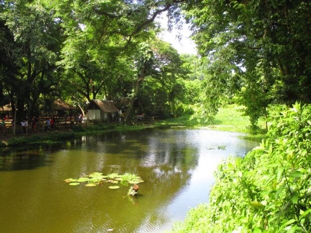fishing lagoon 3
