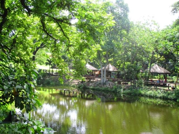 fishing lagoon 4