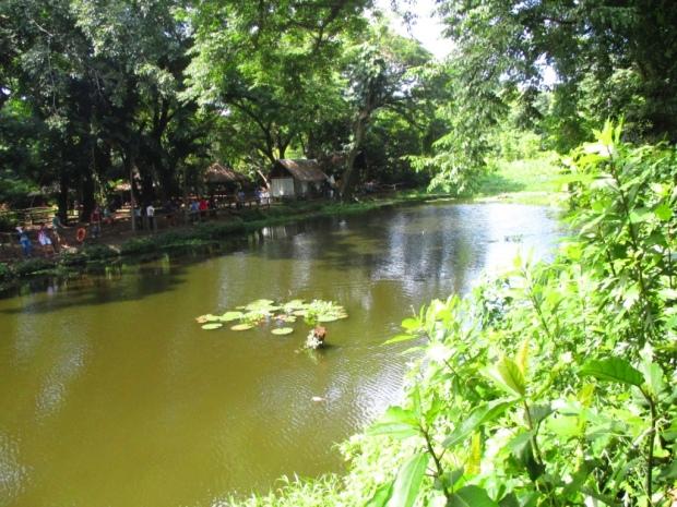 fishing lagoon 5