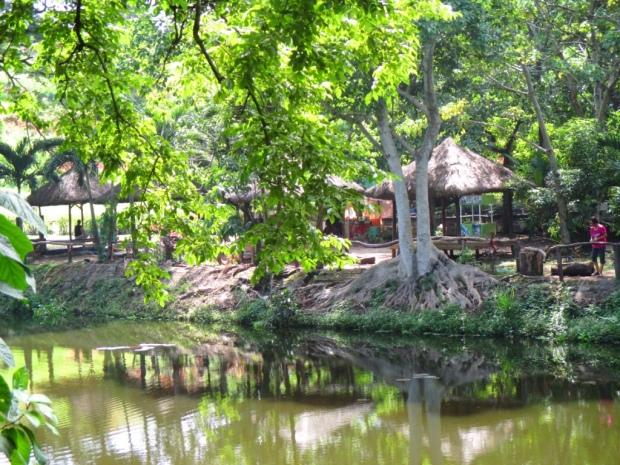 fishing lagoon 6