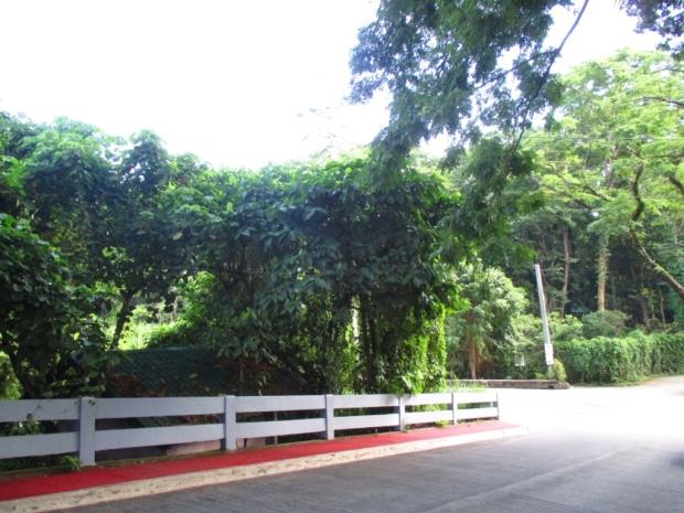 lep entrance 2