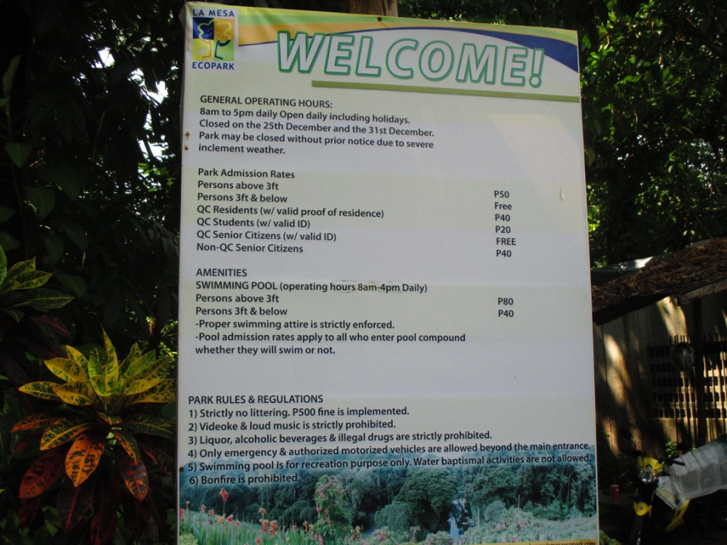 Nature in the city my sunflower world - La mesa eco park swimming pool photos ...