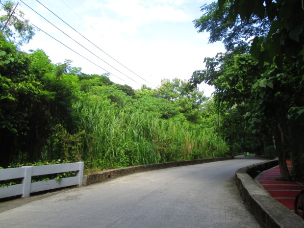lep entrance drive