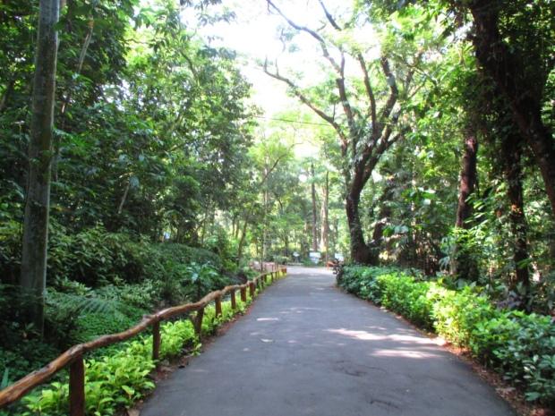 lep entrance path
