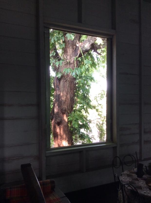 Jalandoni House Back Window