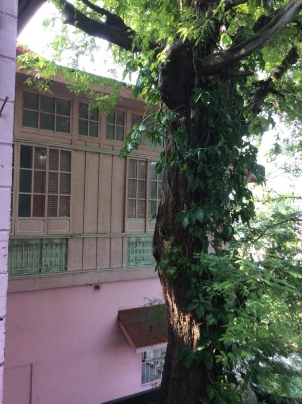 Jalandoni House View from Azotea
